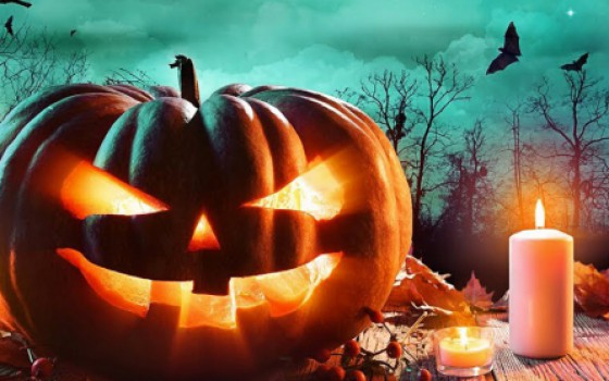Halloweenfair West-Friesland viert feest